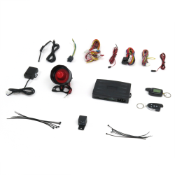 2 Way LCD Alarm with Remote Start - Part Number: STRS9950
