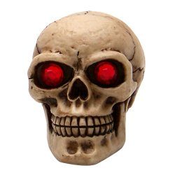 Skull with Red Eyes Custom Shift Knob and Topper - Part Number: ASCSN06059