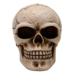 Sammy Skull Custom Shift Knob and Topper - Part Number: ASCSN06032